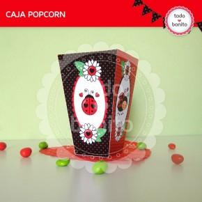 Ladybug rojo: caja popcorn