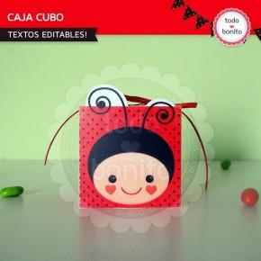 Ladybug rojo: cajita cubo
