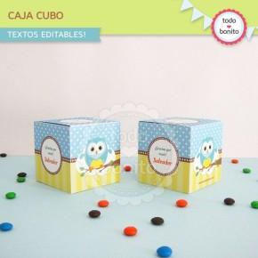 Búhos niños: cajita cubo