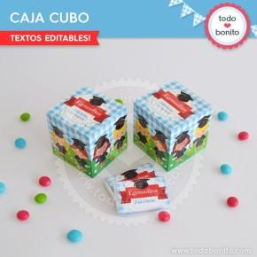 Egresaditos: cajita cubo